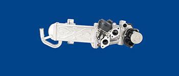 Powertrain Low Pressure EGR Valve | Saint-Gobain Seals